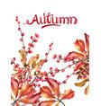 autumn wild berries card watercolor vector image vector image