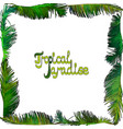 frame from palm leaves vector image