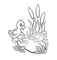 Little cute duckling tries to enter to the pond vector image vector image