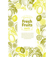 vintage citrus banner template lemon tree design vector image vector image