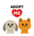 adopt me dont buy dog cat pet adoption vector image vector image
