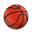 drawing basketball ball equipment vector image