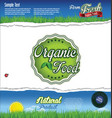 ecology nature organic food background vector image vector image