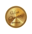 Golden badge high quality vector image vector image