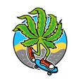 marijuana skater vector image vector image