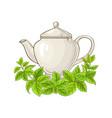 melissa tea vector image vector image