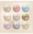 set pearls different colors vector image vector image