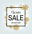 winter sale poster with frame vector image