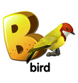 A letter B for bird vector image vector image
