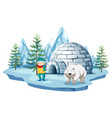 arctic scene with boy and polar bear by igloo vector image