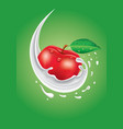 milk splash with fresh apple vector image vector image