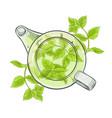 peppermint tea vector image vector image