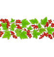 red currant pattern on white background vector image vector image