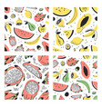 set of hand drawn set of tropical fruits vector image vector image