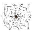 Spiderweb Big spider web Scary spider of web vector image vector image