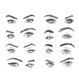female eyes glamour eye lashes woman with vector image