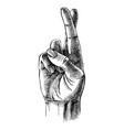 fingers crossed sketch vector image