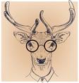 hipster portrait deer with glasses vector image