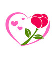 rose on the heart vector image vector image