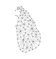 sri lanka map of polygonal mosaic lines network vector image