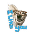 cute dog in glasses looks vector image