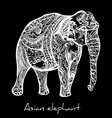 Elephant doodle vector image vector image