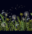 seamless borser with dandelion and wild flowers vector image