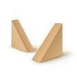 set of brown blank cardboard triangle take vector image vector image