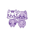 silhouette cute couple cat wild animal with vector image vector image