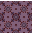 Ethnic pattern Seamless ornament vector image