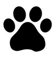 footprint dog vector image