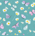 spring daisy flowers and butterfly vector image