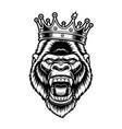 a gorilla in crown vector image