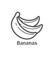 Bananas thin line icon isolated fruit linear