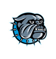 Bulldog Dog Head Mascot vector image vector image