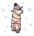 cute character lama vector image vector image