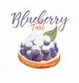 fresh blueberry tart hand draw sketch watercolor vector image vector image
