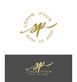 s p handdrawn brush monogram calligraphy logo vector image vector image