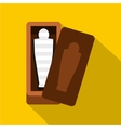 Sarcophagus of an Egyptian mummy icon flat style vector image vector image