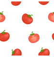 tomato cartoon seamless pattern on white vector image