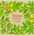 walnut branches frame on color background vector image vector image