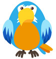 blue parrot with happy face vector image vector image