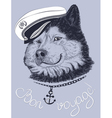 dog captain vector image vector image