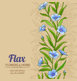 flax plant pattern on color background vector image vector image