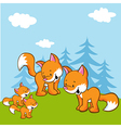 fox family on meadow near the forest vector image