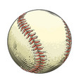 hand drawn sketch baseball ball in color isolated vector image vector image