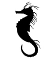 seahorse silhouette vector image vector image