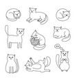 cats doodle sketch collection vector image vector image