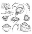rice sketch set isolated sacks with grain seeds vector image