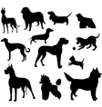 set of dog silhouette vector image vector image